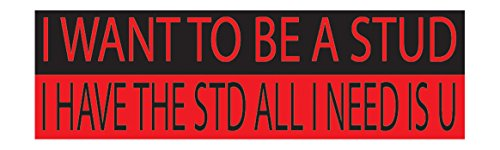 Red and Black Large Funny Auto Car Decal Bumper Sticker Truck RV Boat Window STUD STD All I NEED is U (Std Rear Bumper)