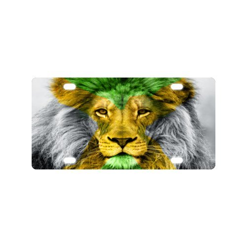 Jamaican Flag License Plate with Beautiful Design-12