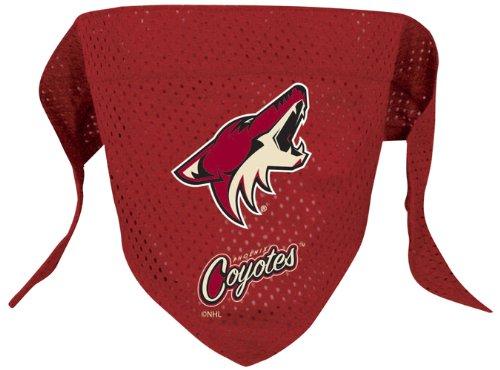 Hunter Mfg. LLP NHL Phoenix Coyotes Pet Bandana, Team Color, Large