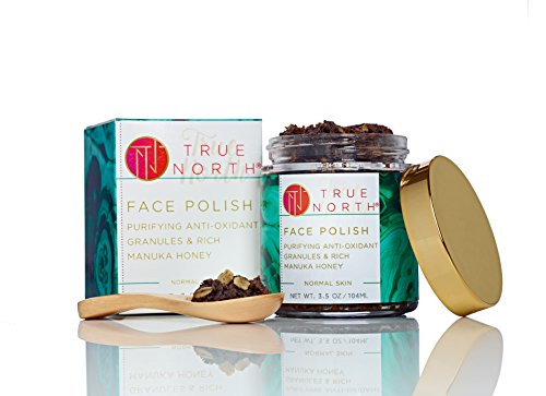 Face Polish Exfoliator & Mask with Chaga and Manuka honey - Made with natural and organic ingredients from Maine by True North Beauty made in Maine