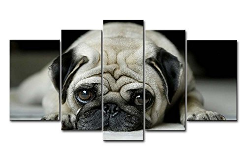 So Crazy Art Black & White 5 Piece Wall Art Painting Pug Lying On Front Prints On Canvas The Picture Animal Pictures Oil For Home Modern Decoration Print Decor For Bathroom