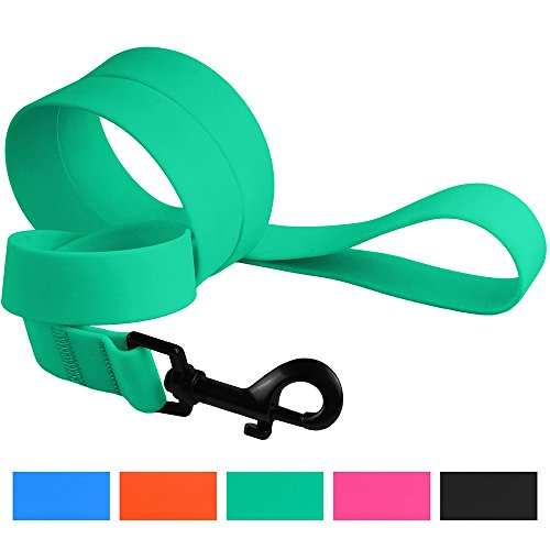 Plastic Dog Leash (CollarDirect Waterproof Dog Leash Small Medium Large Durable Pet Leashes for Walking Training Running Pink Black Blue Orange Green (M, Mint Green))