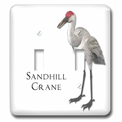 3dRose lsp_51595_2 Sandhill Crane Shorebird Double Toggle (Crane Switchplate)