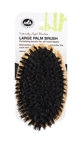 Pet Champion PTBBPLMBR All Natural Bristle Bamboo Palm Pet Brush, Large, Brown by Pet Champion