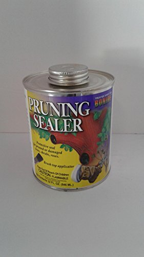best-quality-pruning-sealer-brush-top-size-1-quart-by-bonide-products-inc