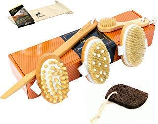 (6 Piece Premium Dry Brushing Body Brush Set – Natural Boar Bristle Body Brush, Exfoliating Face Brush, Cellulite and Lymphatic Smoothing Brush, Ultimate Detox Brush, Volcanic Pumice Stone – Skin Care)