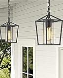 Emliviar Modern Outdoor Pendant Light, 1-Light