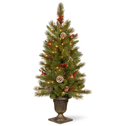 National Tree Feel Real Frosted Mountain Spruce Entrance Tree with Cones in Silver Brushed Urn & 100 Clear Lights, 4', Green