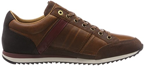 Braun D'oro Pantofola tortoise jcu Uomo Homme Matera Shell Baskets Low ROvYnq