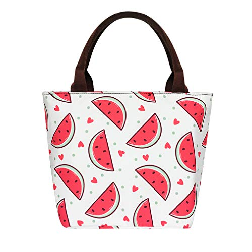 Watermelon Lunch Bags for Women Insulated Lunch Box Totes for Office/School/Camping/BBQ Canvas (Watermelon Cleaning Supplies)