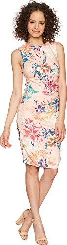 Nicole Miller Women's Lauren Sheath Dress Blush Multi 0