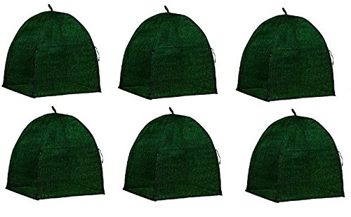 NuVue 20253 36'' x 36'' x 38'' Green Frost Proof Winter Shrub Protector Covers - Quantity 6 by Nuvue