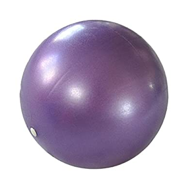 Jinjin Exercise Ball for Yoga Balance Fitness Stability Workout Guide Smooth Yoga Ball Anti-Burst Heavy Duty Stability Ball Exercise Ball Accessories: Baby
