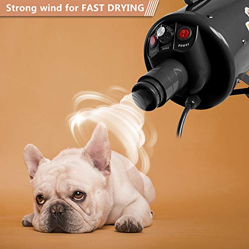Bonnlo 2400W 3.2HP Stepless Adjustable Speed Pet Grooming Hair Dryer with Heater Quick Blower for Dogs Cats-4 Different Nozzles(Single Motor)(Black) by Bonnlo (Image #4)