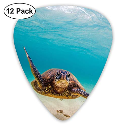 Unique Designs Guitar Picks - Underwater Scuba Diving for sale  Delivered anywhere in USA