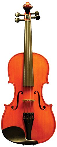 Corde di Salice CS115VN1/2 Beginner Violin Package - Primo, 1/2 by Corde di Salice