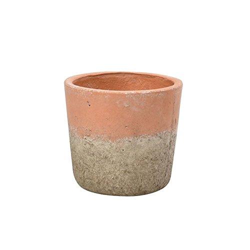 Burgon & Ball Aged Terracotta Indoor House Plant Pot (Medium Terra Cotta)