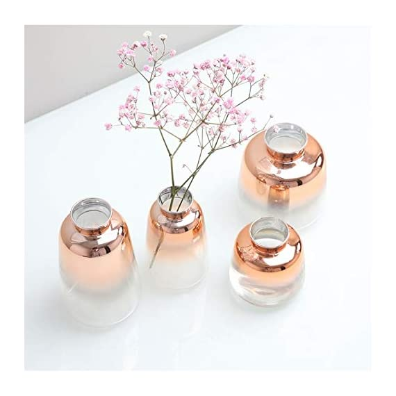 """SVY Flower Bud Ombre Vase, Desk Floral Glass Vase, Champagne Gold Color Stylish Decorative Scent Bottle Shape Flower Glass Vase (2.56"""" W 4.33"""" H) - High Qualiy with 14 Days Warranty -- 100% Satisfaction Guarantee. The flower bud vase is made of classic glass. Each vase features thick glass walls and weighted base to ensure durability. This vase is made using only high quality material. Stylish Design -- champange gold color stylishly display your favorite blooms in this bud vase, it's tube form and subtle lines create a warm and contemporary look and is perfect for any room in the home. Perfect For Plants -- The flower bud vase fits perfectly with floral stems or your favorite fresh flower (not included). - vases, kitchen-dining-room-decor, kitchen-dining-room - 41sBYLGbtOL. SS570  -"""