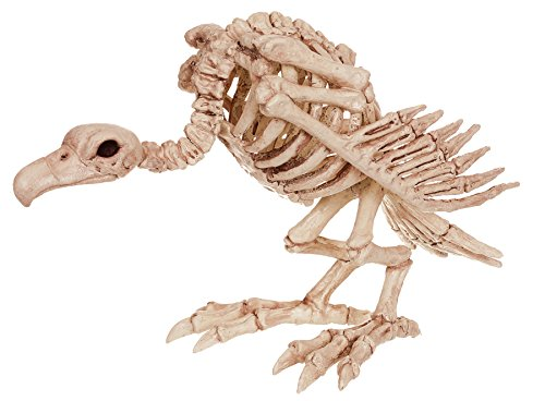 Scary Real Looking Vulture Skeleton Horror Party Decoration Halloween Prop]()