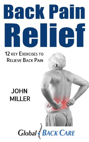 Back Pain Relief John Miller ebook product image
