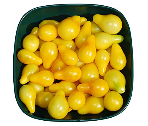 200mg Organic Yellow Pear Tomato Seeds ~60 Seeds Easy Minis Grape Cherry USA
