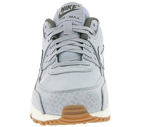 Nike Dames Air Max 90 Prem Loopschoen Wolf Grijs / Wolf Grijs-zeil