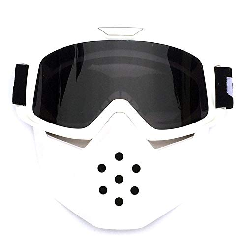ZZKJTANGYMTT Motorcycle Glasses, Face Shields, Windproof Glasses, Professional Racing Goggles, Cool Knight Equipment, Anti-Uv, Ski Goggles, Field Travel, Electric Car Goggles,Gray