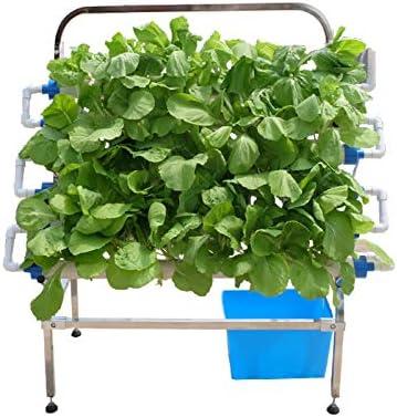 CRZJ Kit de Cultivo hidropónico, 66 sitios 6 Tubos Equipo de siembra hidropónico, Kit de Cultivo de jardín de balcón para el hogar: Amazon.es: Hogar