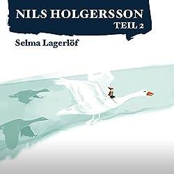 Die wunderbare Reise des kleinen Nils Holgersson mit den Wildgänsen 2