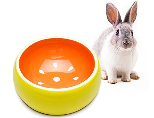 Mkono No-Tip Ceramic Rabbit Food Bowl Feeder for Guinea Pig Hamster Chinchilla, Grapefruit by Mkono