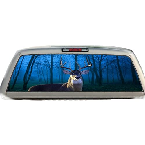 Pickup Truck Rear Window Decal: Amazon.com