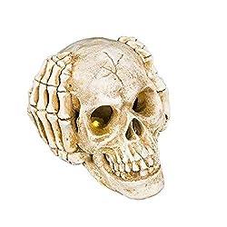 Fan-Ling Resin Crafts,Dinosaur Skull Fossil Teaching SkeletonModel, Halloween Decoration,Halloween Spooky poseable Skull,Halloween Skeleton Props,Best Halloween Decoration (B)