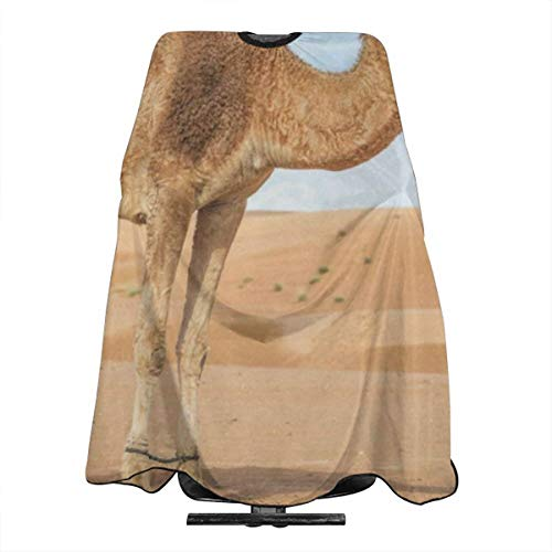 Camel In The Desert Salon Hair Cutting Cape Cloth Stylish Haircut Tool For Family