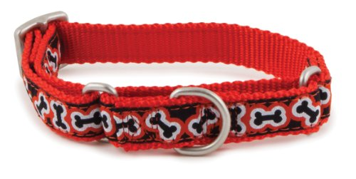 PetSafe Fido Finery Martingale-Style Dog Collar, 3/4-Inch, Medium, Rolling Bones