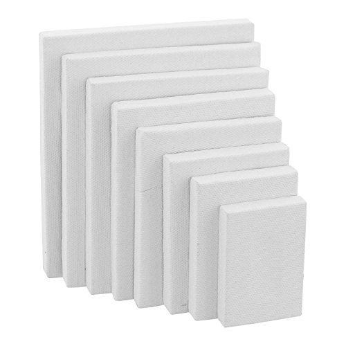 Us Art Supply Professional Stretched Mini Canvas 12 Ounce Primed Variety Rectangular Assortment  8 Canvases Sizes 1X2 3 8  2X2 3 4  2 3 8X3 1 8  2 7 8X3 5 8  3 1 4X4  3 5 8X4 3 8  4X4 3 4  4 3 8X5 1 8
