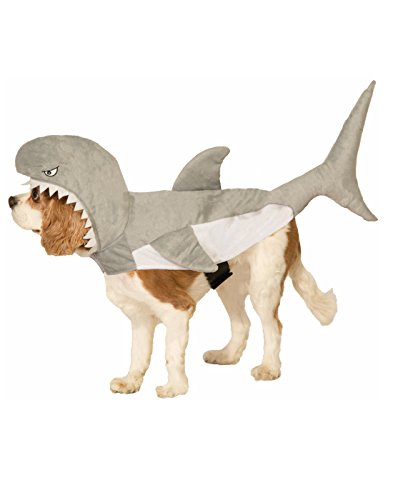 Shark Attack Dog Co