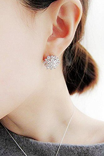 Generic Zhang_Ziyi,_with_sparkling_cubic_zirconia_diamond_S925_ silver _pin ear Nail _flashing_temperament_ earrings _tourist_shopping_accessories_women