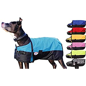 Derby Originals Medium Weight Waterproof Dog Coat with 1 Year Warranty 150G Polyfil & Horse-Tough 600D Ripstop Exterior – Two Tone Design in Multiple Colors & Sizes