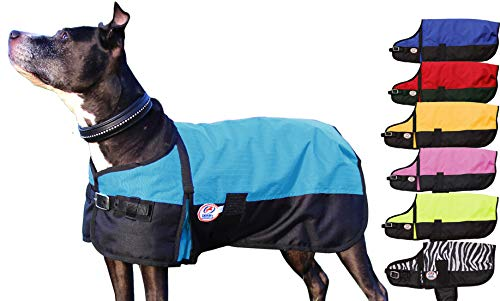 Derby Originals Medium Weight Waterproof Dog Coat with 1 Year Warranty 150G Polyfil & Horse-Tough 600D Ripstop Exterior - Two Tone Design in Multiple Colors & Sizes