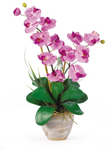 Double Phalaenopsis Silk Orchid - Nearly Natural 1026-MA Double Phalaenopsis Silk Orchid Flower Arrangement, Mauve