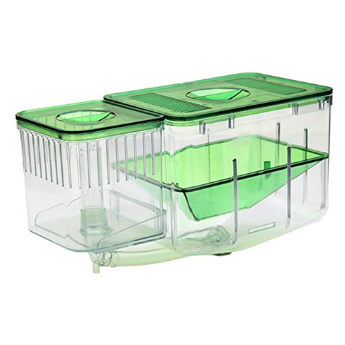 Angelwing Aquarium Breeding Breeder Hatchery Box Nursery Fish House Automatic Devider System - 7.9'' by Angelwing