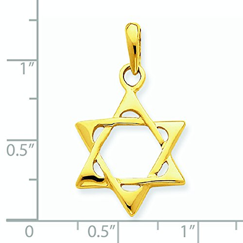 14 Carats Pendentif Etoile de David-Dimensions :  17 x 19 mm-JewelryWeb