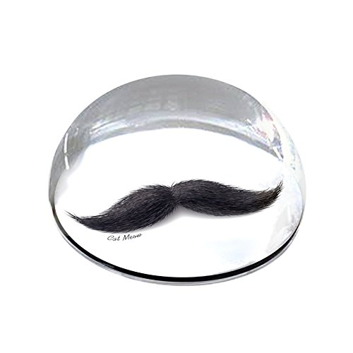 "Forever Crystal ""Dark Mustache Crystal Magnet from Forever Crystal"