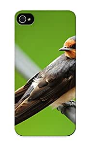 ipod touch4 Case Cover - Slim Fit Tpu Protector Shock Absorbent Case (birds Animals Wildlife Swallow )