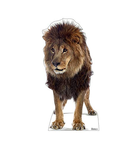 - Advanced Graphics Lion Life Size Cardboard Cutout Standup