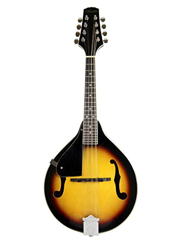 The 4 Best Mandolins for the Money – Reviews 2019