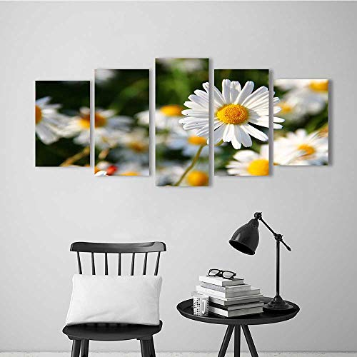 5 Piece Wall Art Painting Frameless Beautiful and Beautiful Flowers Daisies Posters Wall Decor Gift ()