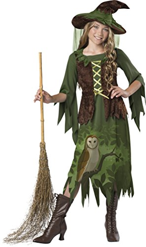 InCharacter Wild Woods Witch Costume, Multicolor, Medium ()