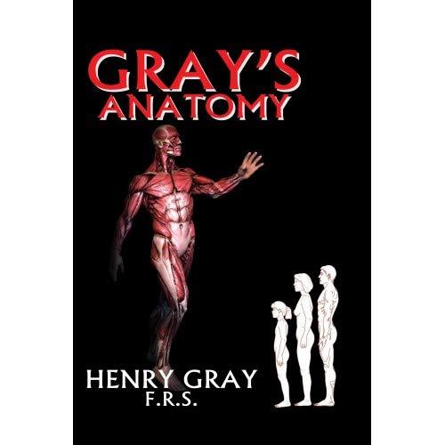 Grays Anatomy {Hb}