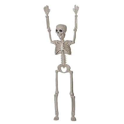 Marco de esqueleto para colgar en la pared, 40 cm, diseño de ...